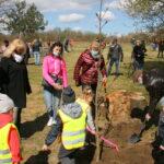 przedszkolaki sadza drzewka
